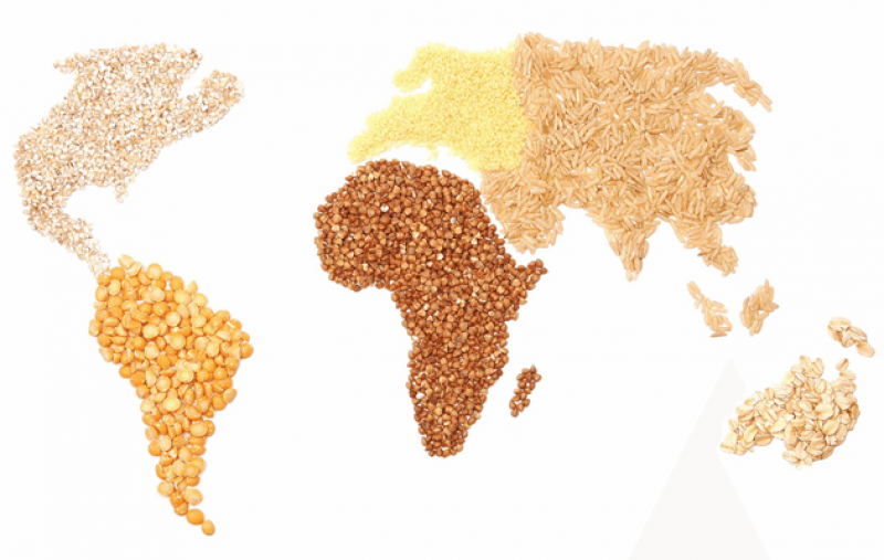 grains world