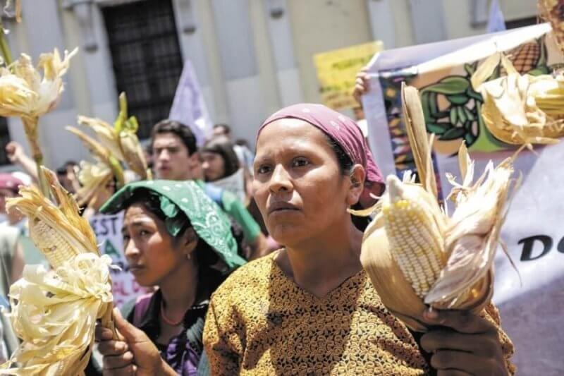 Monsanto protest in Guatamala. Credit: Hoy Nicaragua