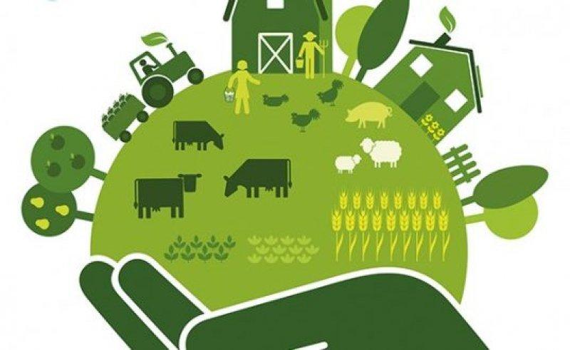 health and sustainability x e