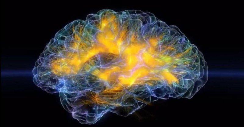 https blogs images forbes com kevinmurnane files electric brain x