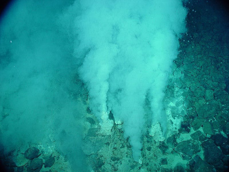 hydrothermalvent white smokers