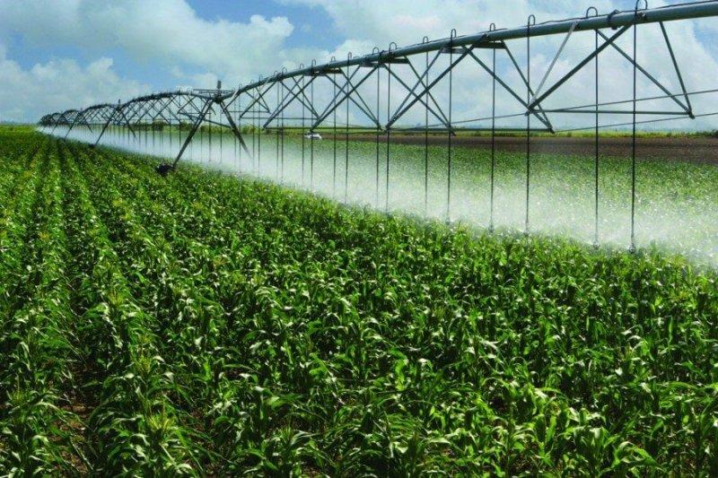 irrigation thinks e