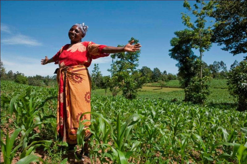 maize farmers dayjpg