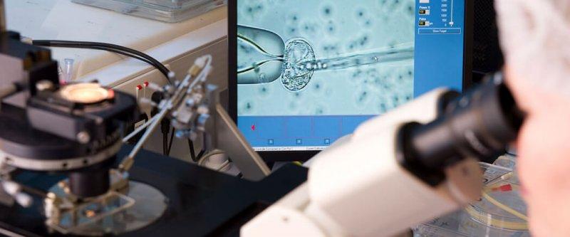 nature moratorium human genome editing