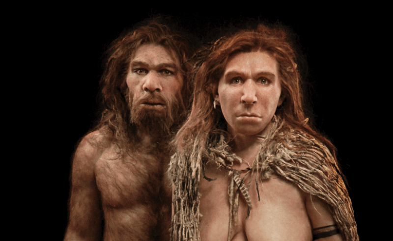 neanderthal hero l