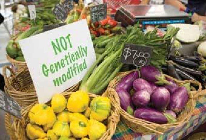 not GM foods