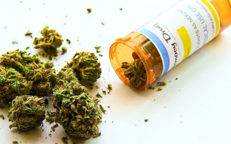 republican senator nothing to fear medical marijuana