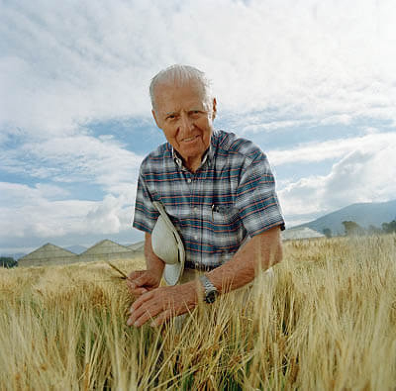 rs borlaug norman in field