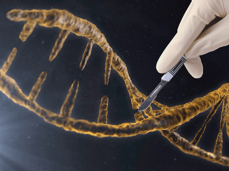 scientists in the uk could win approval to genetically modify human embryos