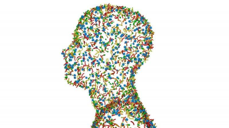 skin microbiome image origimm biotechnology vienna