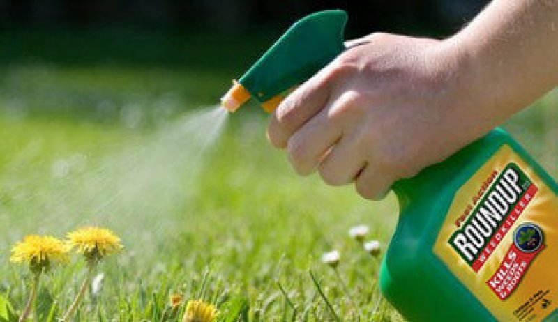 sprayweeds roundup e
