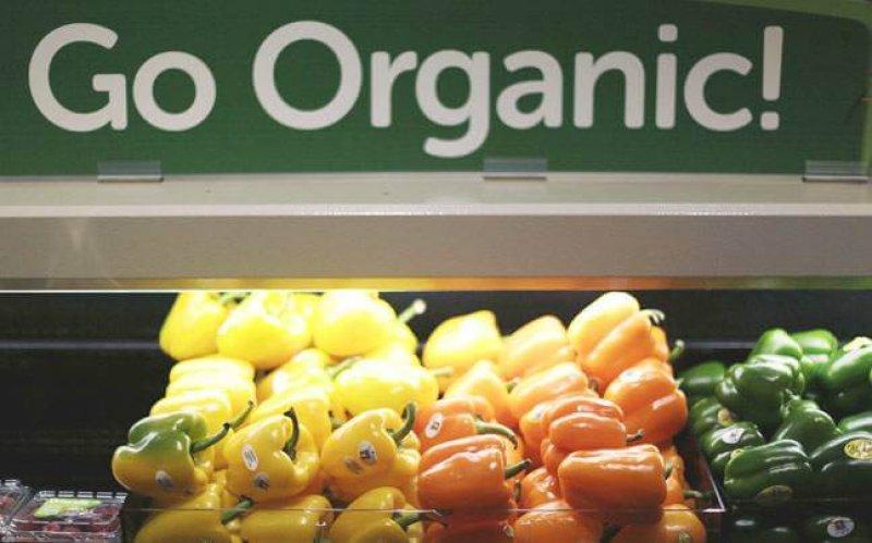 story organic