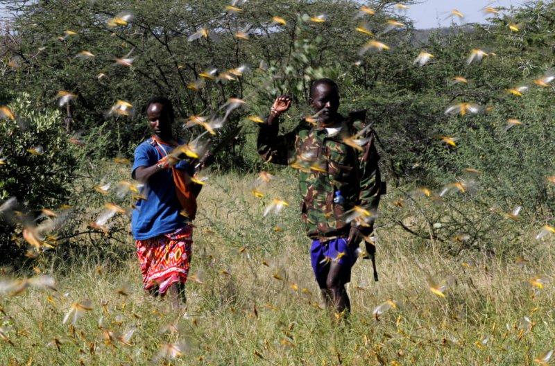 Credit: Njeri Mwangi/Reuters