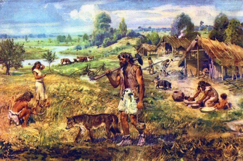 the end of the neolithic period is when humans first started make wine according to new research
