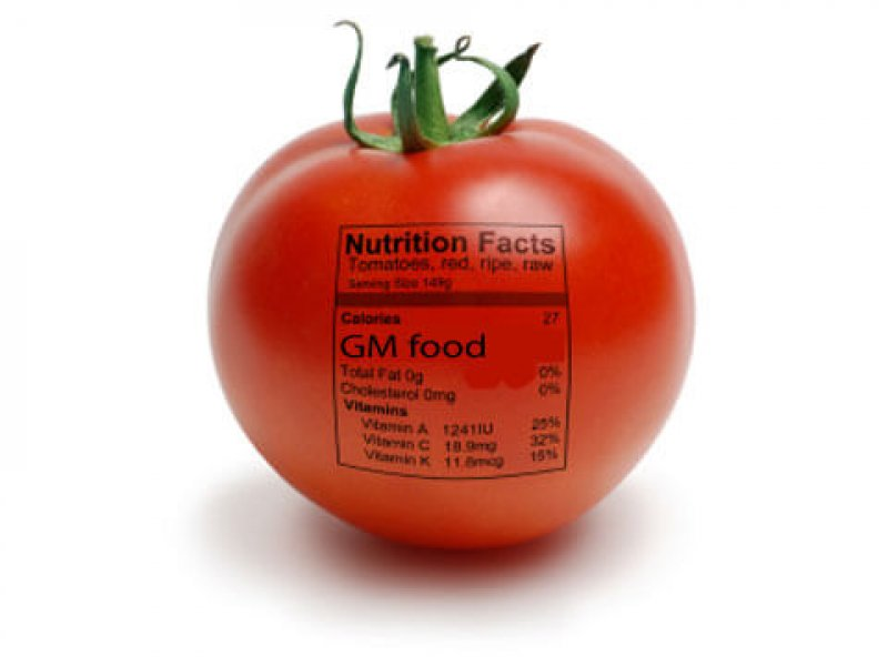 tomato gmo label