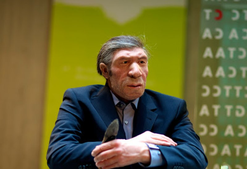 What if Neanderthals wore suits too? Credit: H. Neumann/Neanderthal Museum